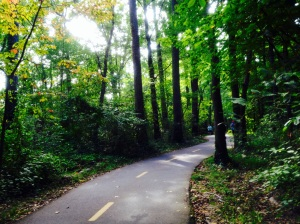 Gorgeous Mount Vernon Trail, circa mile 7