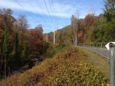 Looking west along the W&OD trail.