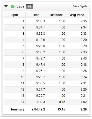 Richmond Half-Marathon, November 14, 2014