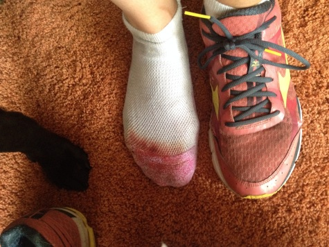 Offically past the blood, sweat, and tears threshold of marathon-training.