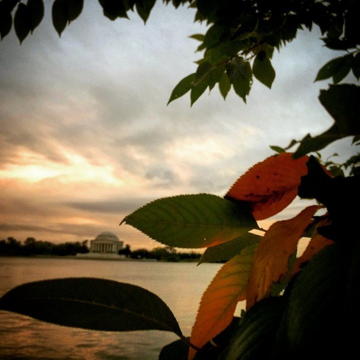 Tidal Basin in the fall at sunset