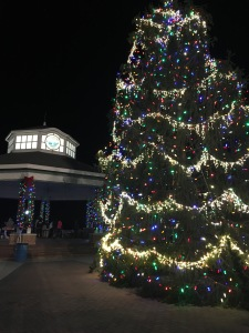 Rehoboth Beach Christmas tree
